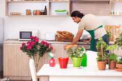 The young handsome man cultivating flowers at home. Young handsome man cultivating flowers at home stock photography