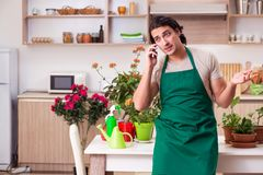 The young handsome man cultivating flowers at home stock image