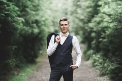 Young handsome man posing on mountain forest Stock Photos