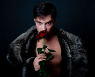 Young handsome man with rose Royalty Free Stock Photography