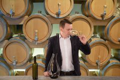 Young handsome man sommelier tasting red wine in wine cellar. Young handsome man sommelier or winemaker tasting red wine in wine cellar royalty free stock image
