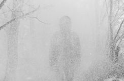 Young handsome man standing in snowfall on background of snowy forest. royalty free stock image