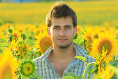 Young handsome man in the sunflower field Royalty Free Stock Photos