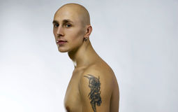 Young handsome man on white. Young handsome bald man on white, studio portrait Royalty Free Stock Photo