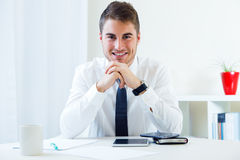 Young handsome man working in his office. Stock Photos