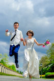Young and handsome newlyweds on a walk in the park Royalty Free Stock Photos