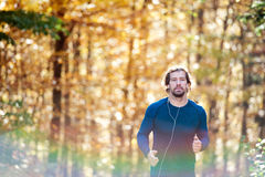 Young handsome runner outside in sunny autumn nature Stock Photos