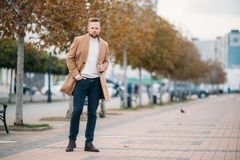 Young handsome stylish man wiyh beard in elegant coat standing in autumn park. Businessman holding hand in pocket and posing. Concept lifestyle, fashionable royalty free stock photography