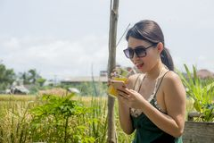Happy Asian Chinese woman on her 20s or 30s smiling having fun using internet on mobile phone drinking orange juice sitting outdoo Stock Image