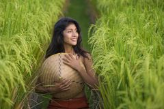 Young happy and beautiful hispanic woman playing with traditional Asian farmer hat smiling having fun posing sexy isolated on. Green rice field in Asia tourist stock photo