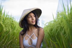 Young happy and beautiful latin woman playing with traditional Asian farmer hat smiling having fun posing sexy isolated on green. Rice field in Asia tourist royalty free stock photo