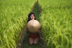 Young happy and beautiful latin woman playing with traditional Asian farmer hat smiling having fun posing sexy isolated on green. Rice field in Asia tourist royalty free stock photos