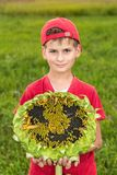 Young happy boy hold sunflower in a garden Royalty Free Stock Photography