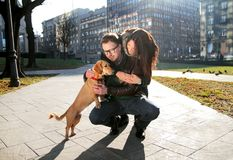Young happy couple with dog enjoy in a beautiful day Royalty Free Stock Image