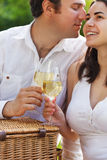 Young happy couple enjoying a glasses of white wine Stock Photos