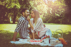 Young happy couple having picnic in the meadow. Stock Images