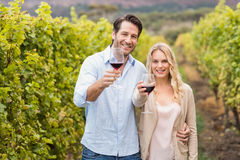 Young happy couple holding a glass of wine and looking at camera. In the grape fields Royalty Free Stock Photos