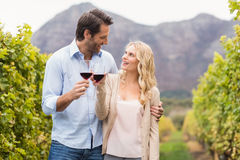 Young happy couple holding a glass of wine and looking at each other Stock Photos