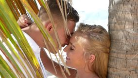 Young happy couple hugging and kissing each other under a palm tree leaf. Romantic relationships or travel concept. HD. Young happy couple hugging and kissing stock video
