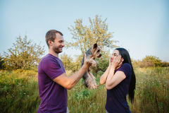 Young happy couple on nature,the boy gives girl a dog - yorkshire terrier as gift Stock Photography