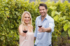 Young happy couple offering wine Royalty Free Stock Photos