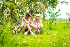 Young happy couple playing with cute and active beagle dog in nature. Tropical island of Bali, Indonesia. Young happy couple playing with cute and active beagle stock photo