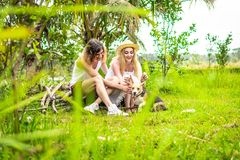 Young happy couple playing with cute and active beagle dog in nature. Tropical island of Bali, Indonesia. Young happy couple playing with cute and active beagle royalty free stock images