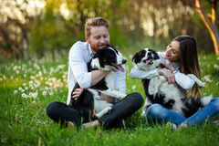 Free Young Happy Couple Playing With Dogs, Having Fun In Park Royalty Free Stock Photo - 204263235