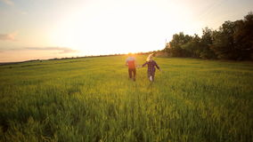 Young happy couple runs through field at sunset. stock footage