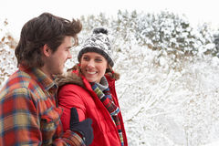 Young happy couple in snow Royalty Free Stock Images