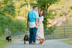 Young Happy Couple walking with English Bulldogs. A young, fashionable, engaged couple walks with two happy English Bulldogs royalty free stock photography