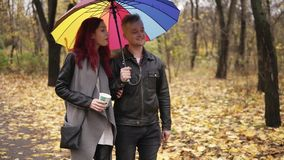 Young happy couple walking together in autumn park holding a colorful umbrella. Attractive woman with red hair is. Holding a paper cup with coffee. They are stock video footage