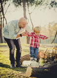 Young happy father playing with excited little cute son walking. And climbing on tree logs in the park having fun outdoors on a sunny Autumn day in family love Royalty Free Stock Image