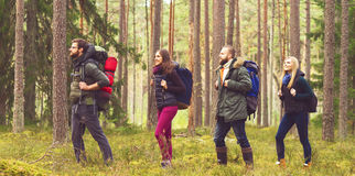 Young happy friends walking in forest and enjoying a good autumn. Day. Camp, tourism, hiking, trip, concept Stock Photo