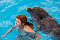 Young happy girl hugs with dolphin. In swimming pool royalty free stock photo