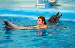 Young happy girl playing with dolphin. In swimming pool stock photography