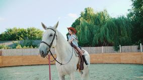 Young happy girl sits on a pretty white horse on the area. 4K stock footage
