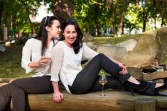 Young happy girls sitting on logs drinking wine. And whispering Stock Photography