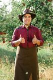 Man garden collect ripe apples hat green red proprietor worker owner harvest. Young happy man in the garden collect ripe apples. The owner of apple orchard is stock photos
