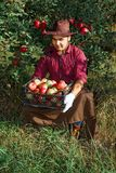 Man garden collect ripe apples hat green red proprietor worker owner harvest box basket. Young happy man in the garden collect ripe apples. A worker in the stock photography
