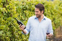 Young happy man looking at wine bottle Royalty Free Stock Photo