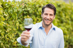 Young happy man smiling at camera and holding a glass of wine. In the grape fields Stock Photo