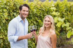 Young happy man smiling at camera and holding a glass of wine. Young happy men smiling at camera and holding a glass of wine in the grape fields Stock Images