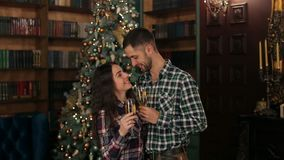Couple with champagne near the Christmas tree. Young happy people clink glasses of champagne on the background of a decorated Christmas tree. A couple in love stock footage