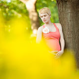 Young happy pregnant woman relaxing in nature Royalty Free Stock Image