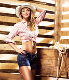Young, happy and sexy cowgirl in western style. Beautiful, young and sexy cowgirl over western background. Image taken in a barn Stock Photo