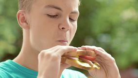Teen boy eating sandwich stock video footage