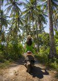 Young happy tourist woman with hat riding scooter motorbike in tropical paradise jungle  with blue sky and palm trees exploring tr. Back view of young happy Stock Image