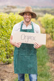 Young happy vintner holding an sign Royalty Free Stock Images