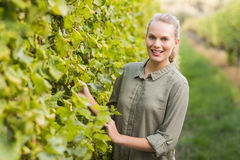 Young happy vintner smiling at camera Royalty Free Stock Images